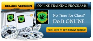 Online cannabis lessons